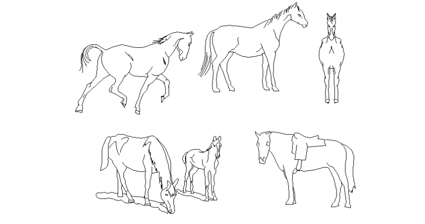 Horse different position vehicle block dwg file