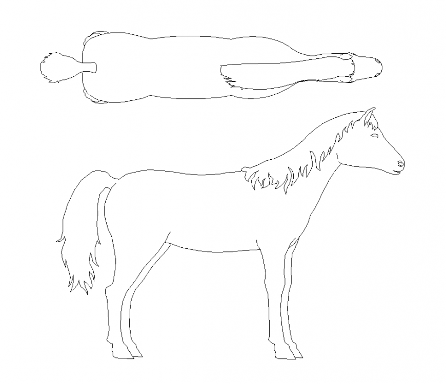 Horse plan and elevation with animal block design dwg file