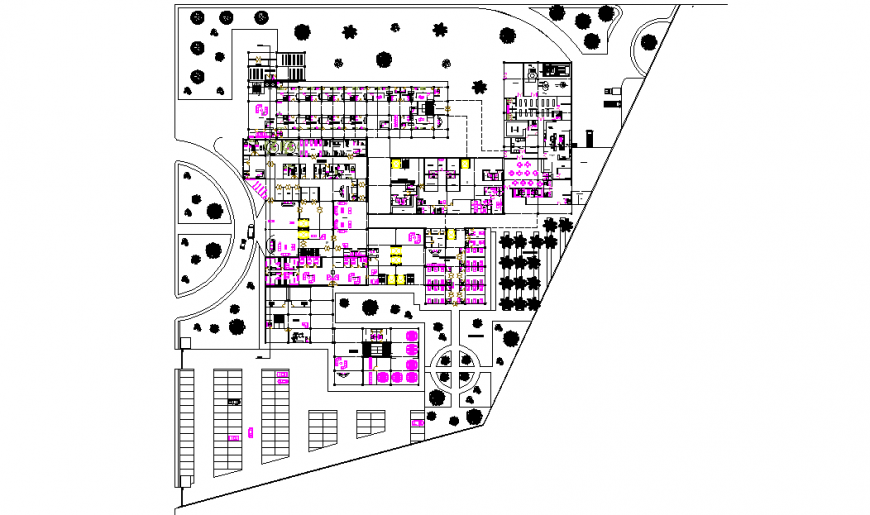 Hospital Different Type Plan Lay-out DWG file Detail