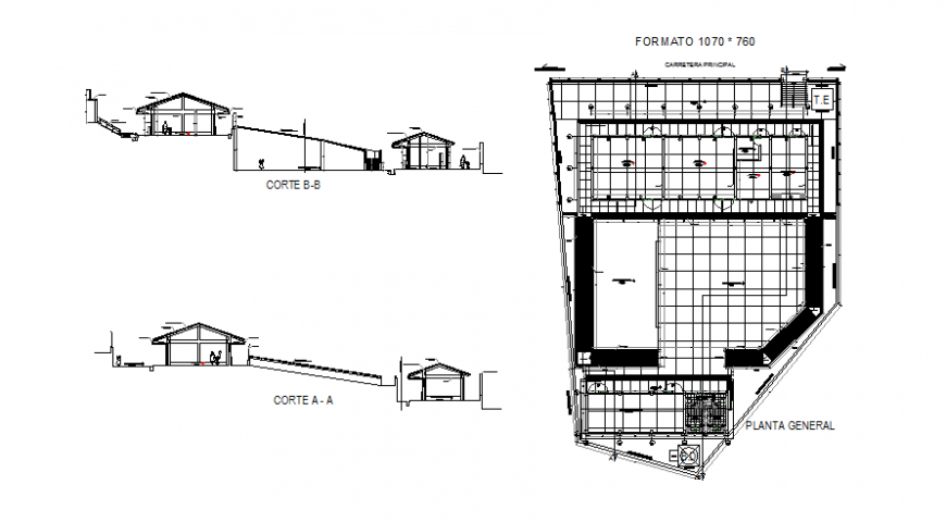 Initial college building facade and back section with general plan details dwg file