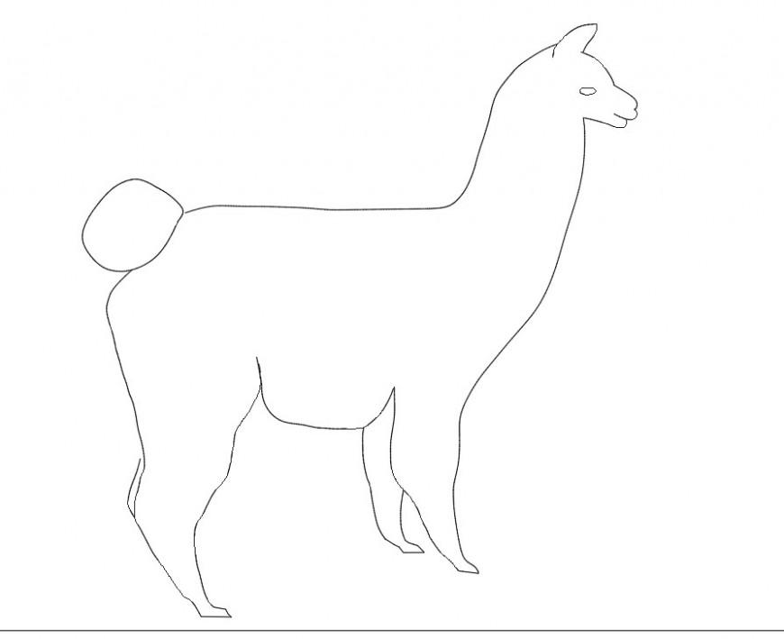 Lama animal view