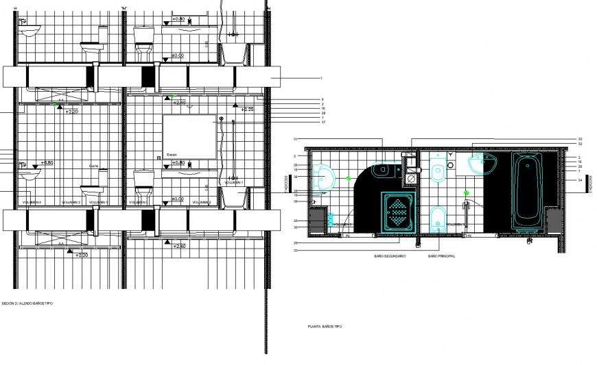 Master bedroom and common toilet plan layout file