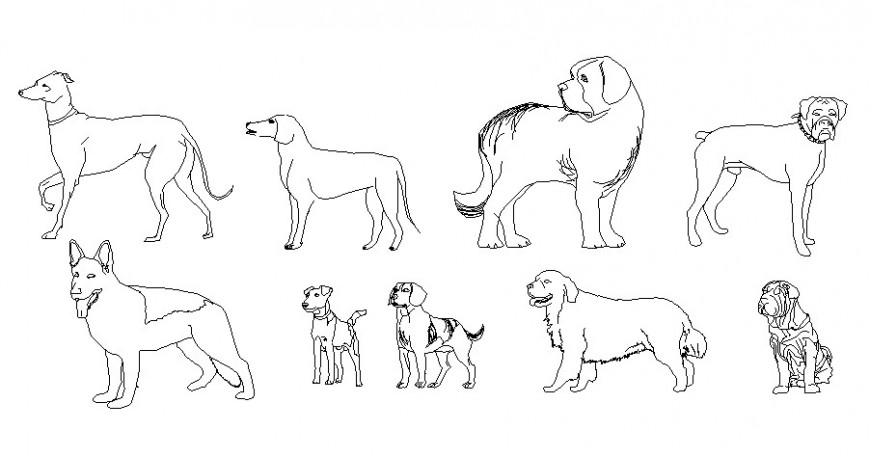 Multiple common dog elevation blocks cad drawing details dwg file