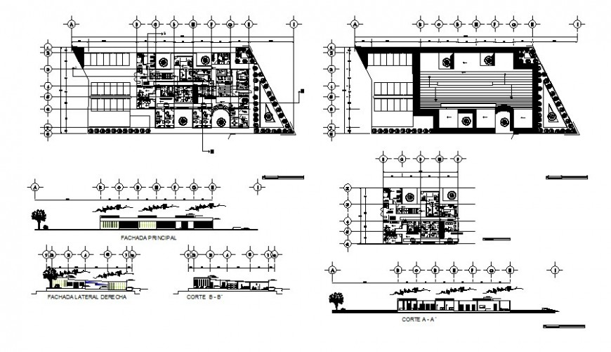 Municipal rural hospital elevation, section and plan cad drawing details dwg file
