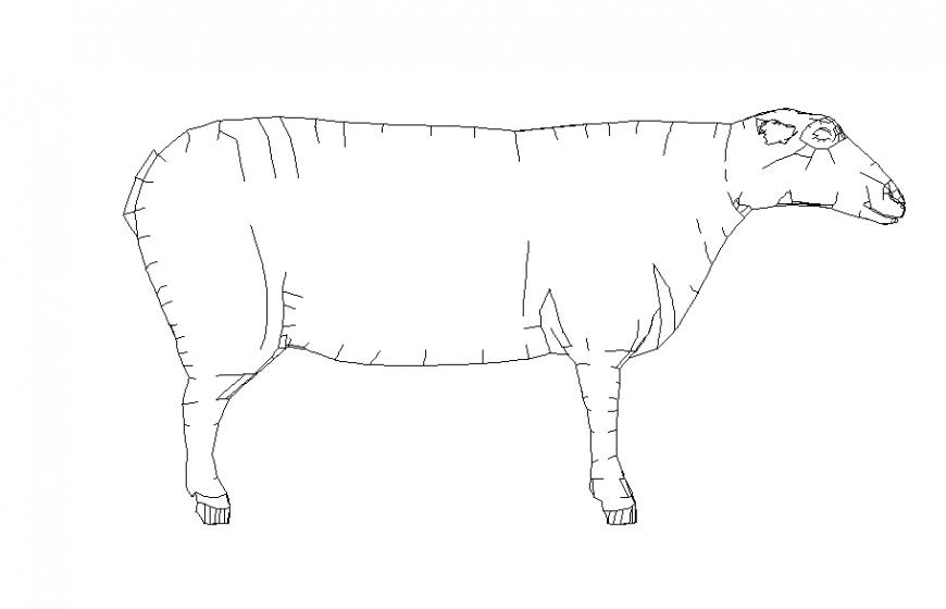 Normal Animal Block Design
