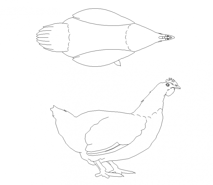 Plan and elevation of hen with animal block detail dwg file