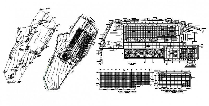 School building site layout plan and distribution plan cad drawing details dwg file