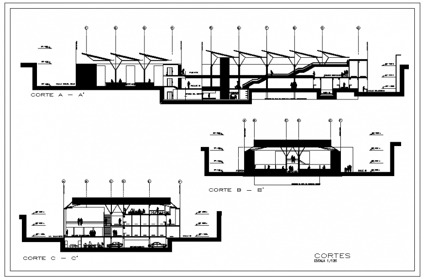 Sectional and elevation of a building dwg file