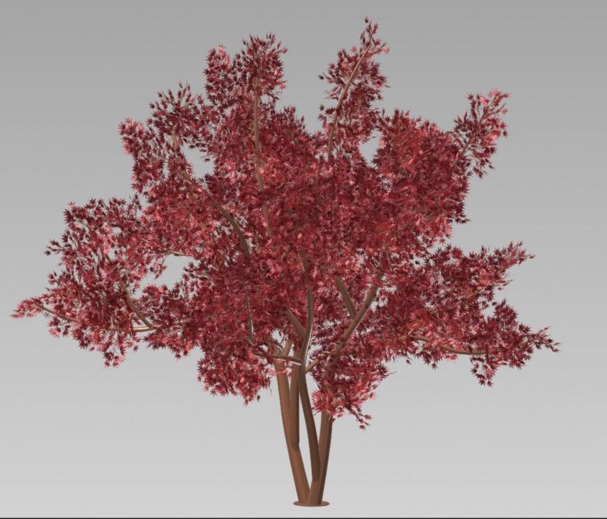 Tree 3 D modal view