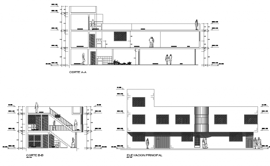 Two story residential house main elevation and section and back section drawing details dwg file