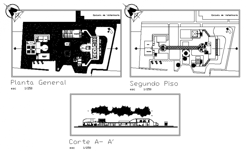 Veterinary clinic hospital main section, general plan and second floor plan details dwg file