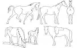 Horse Block Detail