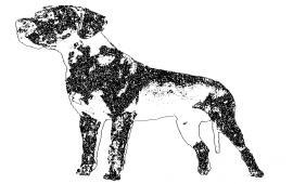 Dog Block Detail