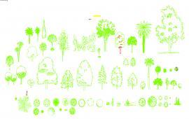 Garden Tree Design