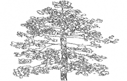 Tree Block DWG file