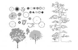 Autocad blocks of trees
