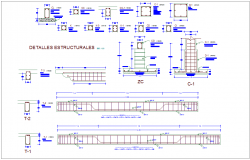 Beam and column design view with structural view for municipal agency dwg file