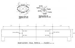 Beam elevation and constructive structure details dwg file