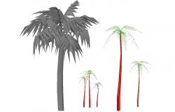 Coconut Tree 3D Model With Basic Rendered Drawing Free Download