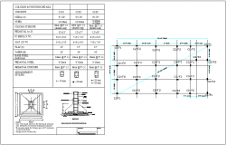 Column foundation specification and plan view detail dwg file