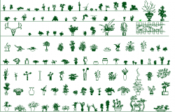Common plant blocks of garden decoration dwg file