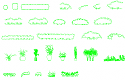 Common tree and plant blocks design dwg file