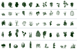 Common tree and plant blocks details of garden dwg file