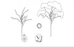 Common tree and plant elevation blocks cad drawing details dwg file