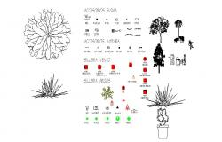 Creative tree plants and garden blocks cad drawing details dwg file