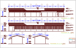 Elevation and different axis section view for education building dwg file
