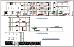 Elevation and section view of collage dwg file