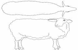 Ewe top view and side view cad block design dwg file