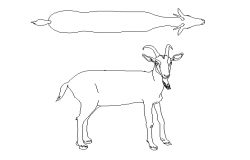 Goat 2d elevation detail