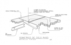 Isometric view of ceiling with structure detail dwg file