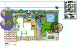 Landscaping plan of home