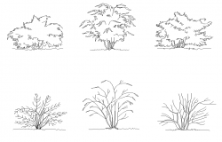 Landscaping plants detail elevation 2d view layout file