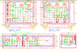 Layout plan of a sanitary section dwg file