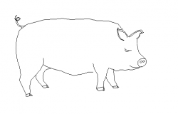 Pig 2d elevation dwg file