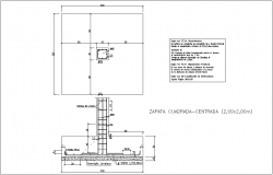 Plan and elevation of rain forced of column with construction detail view dwg file