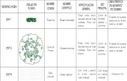 Plant blocks details dwg file
