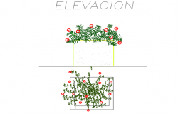 Plant elevation and plan detail dwg file