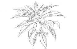 Plant plan dwg file .