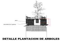 Plantation detail of trees dwg file