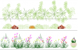 Plants detail dwg file