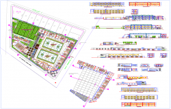 Primary educational institution architecture drawing in cad