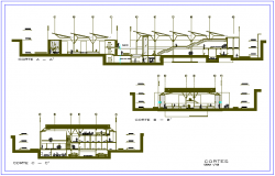 Section of different axis view for market building dwg file