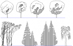 Skating tree elevation detail dwg file