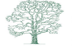 The architecture design of single tree design dwg file