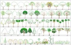Tree Blocks autocad file