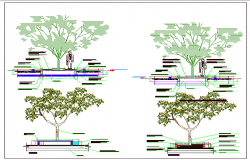 Tree planting details of garden dwg file